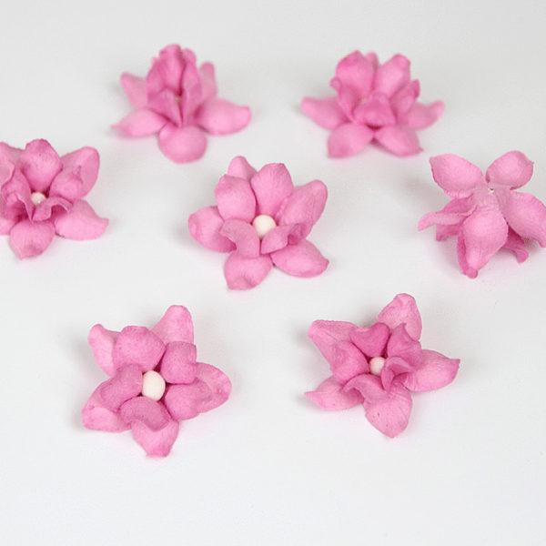 Фиалки - Розовые